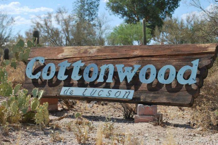 Cottonwood 12 Steps Rehab