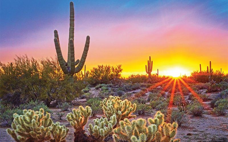 Cottonwood Tucson Rehab