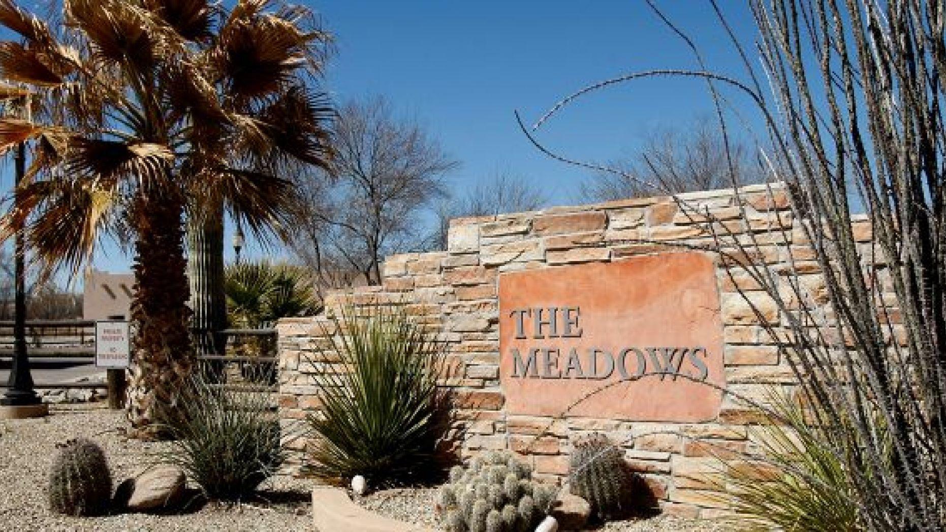 the meadows addiction rehab
